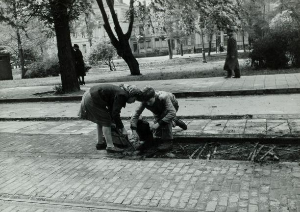 Niños holandeses recogiendo madera de una antigua vía férrea para usarla como leña. Mayo de 1945